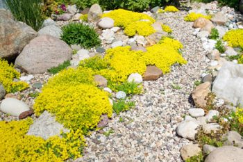 Landscape Rock Keizer
